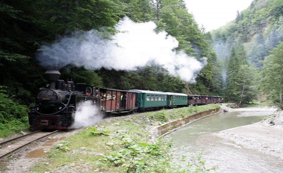 Trenul_Mocanita_pe_calea_ferata_ingusta_forestiera_Valea_Vaserului_-_Viseu_de_Sus