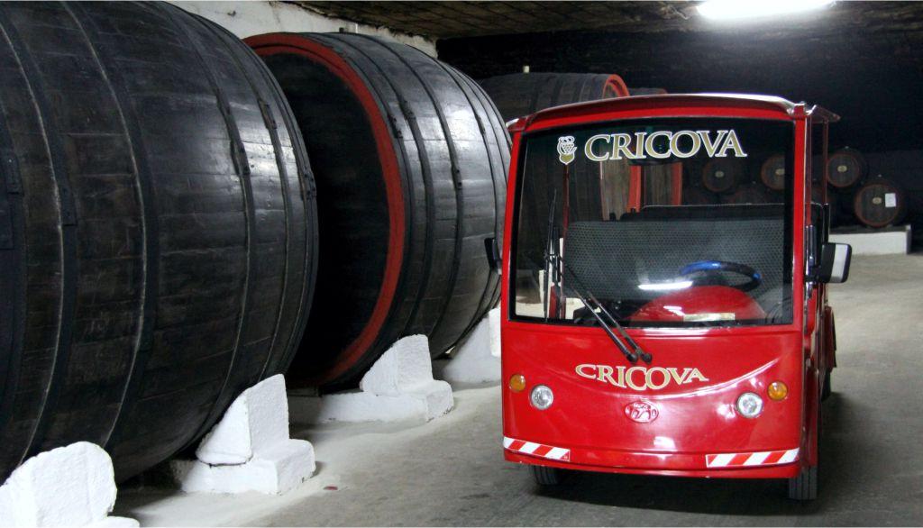 cricova wine cellars